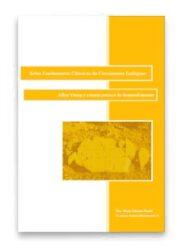 Sobre Fundamentos Clássicos do Crescimento Endógeno: Allyn Young e a teoria precoce do desenvolvimento
